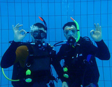 Dolphin Dive dla WOŚP