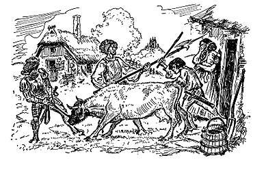 Ognica – osada nad Świną ( 1 )