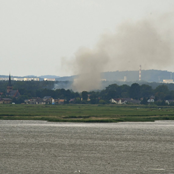 Pożar trawy w Przytorze