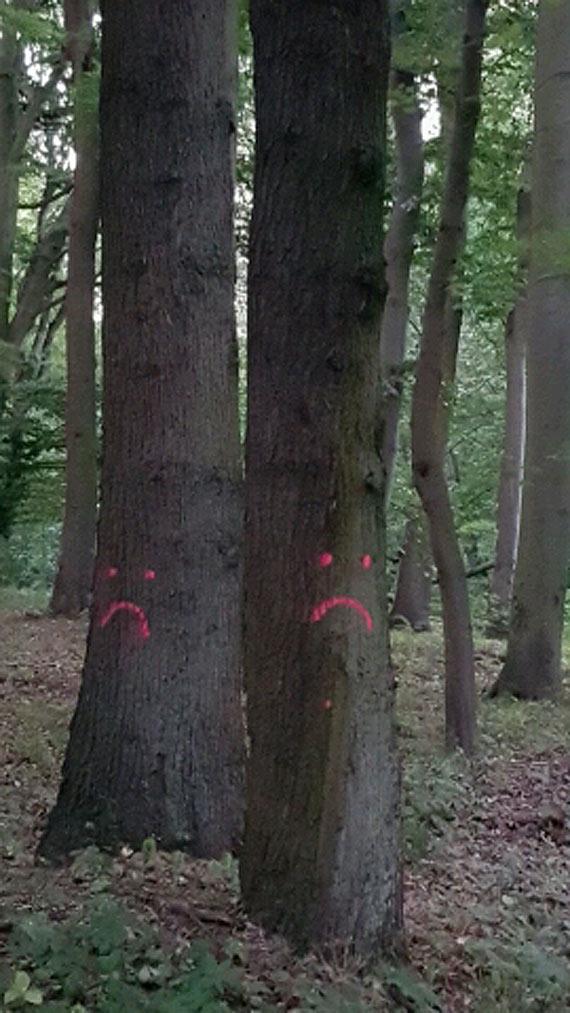 Drzewa głosu nie mają ale ludzie mają rozum. Błagamy by użyć go przy planach ulicy Nowojachtowej!!!