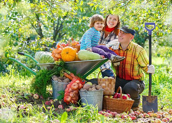 Światowy Dzień Owoców i Warzyw!  – świętuj codziennie