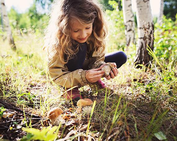 """Jak mądrze dbać o przyrodę i od czego zacząć? Trwają zapisy przedszkoli i szkół do XII edycji programu """"Kubusiowi Przyjaciele Natury"""""""