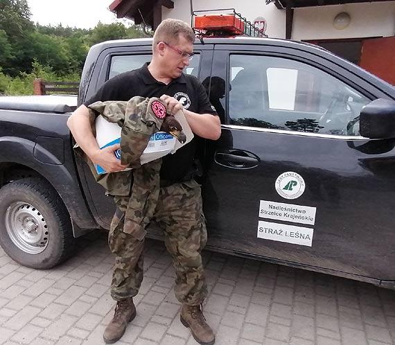 Młody bielik uratowany przez leśników trafił do ośrodka w Wielgowie