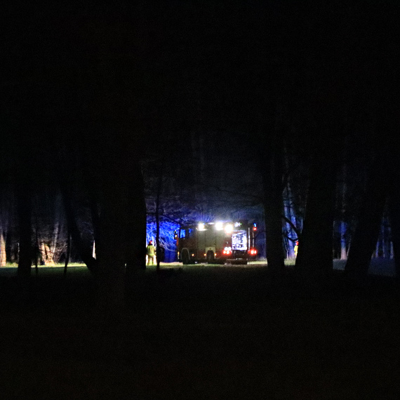 Ogień w Parku Zdrojowym. Na miejsce przyjechał 1 zastęp strażaków oraz policja