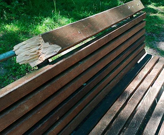 Mieszkaniec - Uwaga na ręce i nogi w parku Chopina
